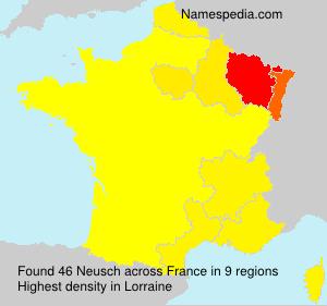 Surname Neusch in France