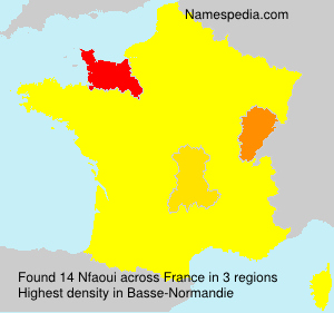 Surname Nfaoui in France