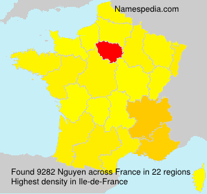 Surname Nguyen in France