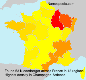 Surname Niederberger in France