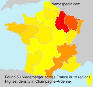 Familiennamen Niederberger - France