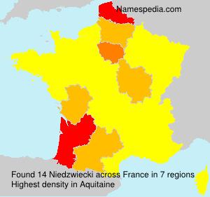 Surname Niedzwiecki in France