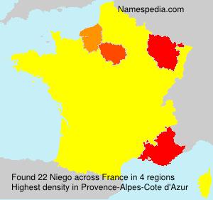 Familiennamen Niego - France