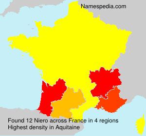 Surname Niero in France