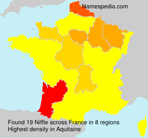 Surname Niffle in France