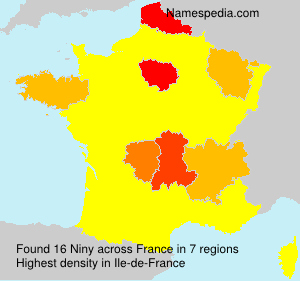 Familiennamen Niny - France