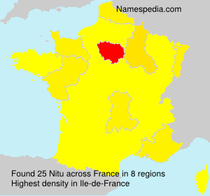 Surname Nitu in France