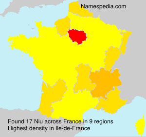 Surname Niu in France
