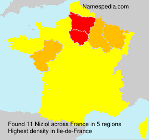 Familiennamen Niziol - France