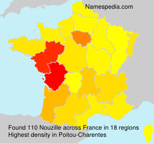 Surname Nouzille in France