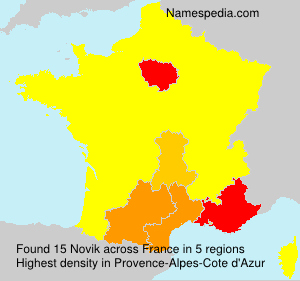 Surname Novik in France