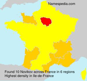 Surname Novikov in France