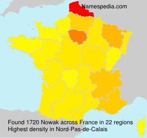 Surname Nowak in France