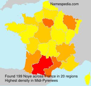 Surname Noye in France