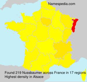 Surname Nussbaumer in France