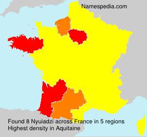 Surname Nyuiadzi in France