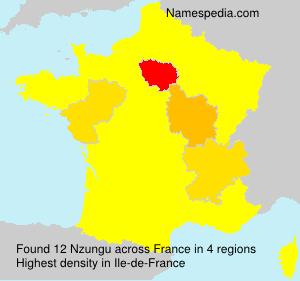 Familiennamen Nzungu - France