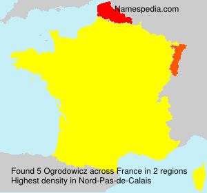 Surname Ogrodowicz in France