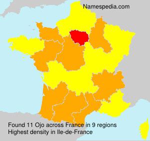 Familiennamen Ojo - France