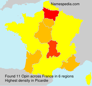 Surname Opin in France