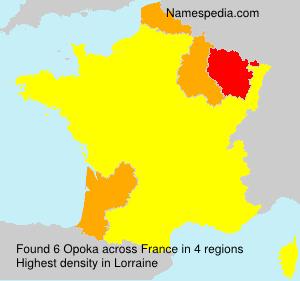 Surname Opoka in France