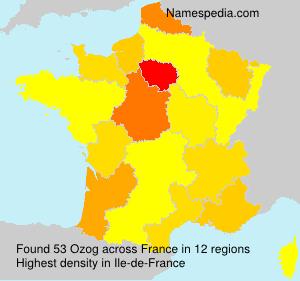Surname Ozog in France