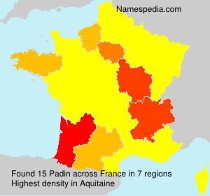 Surname Padin in France