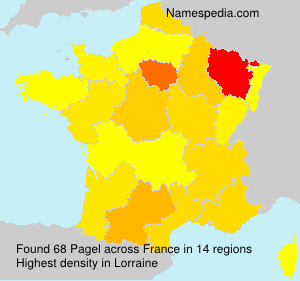 Surname Pagel in France