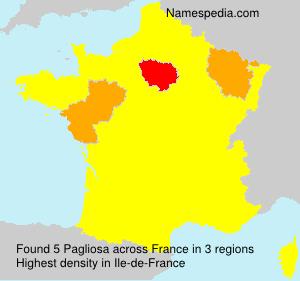 Surname Pagliosa in France