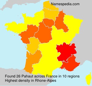 Surname Pahaut in France