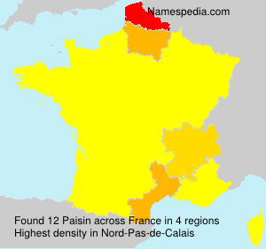 Familiennamen Paisin - France