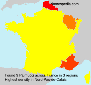 Surname Palmucci in France