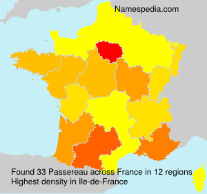 Surname Passereau in France