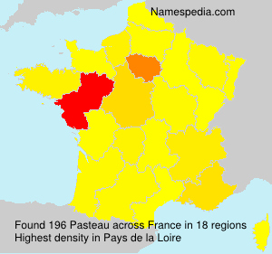 Surname Pasteau in France