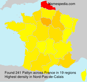 Surname Pattyn in France