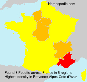 Surname Pecetto in France