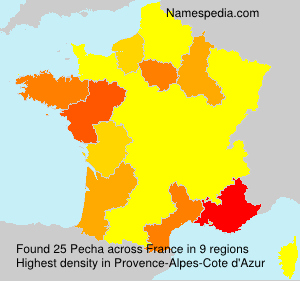 Familiennamen Pecha - France
