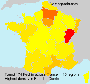 Surname Pechin in France