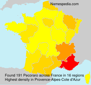 Surname Pecoraro in France