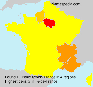 Surname Pekic in France