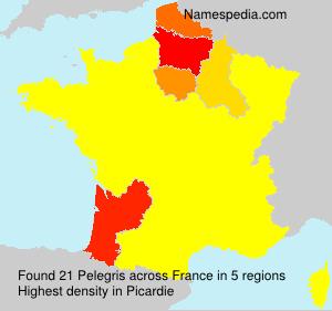 Pelegris
