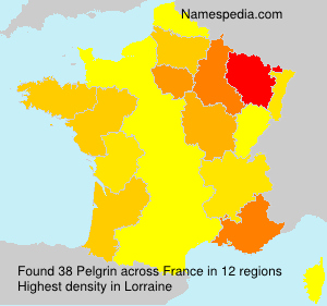 Surname Pelgrin in France