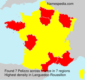 Surname Pelizzo in France