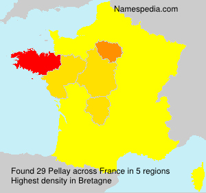 Surname Pellay in France