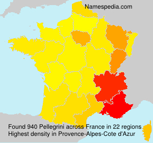 Surname Pellegrini in France
