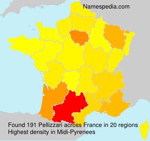 Surname Pellizzari in France