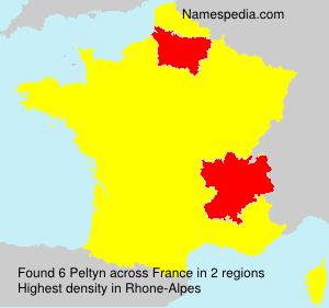 Surname Peltyn in France
