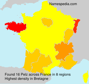 Surname Pelz in France