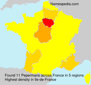 Surname Pepermans in France