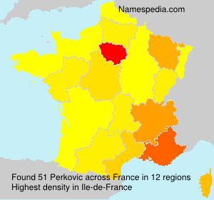 Surname Perkovic in France
